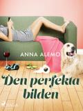 Cover for Den perfekta bilden