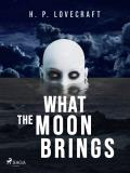 Cover for What the Moon Brings