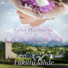 Cover for Lukittu lähde