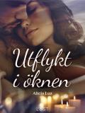 Cover for Utflykt i öknen - erotisk novell