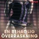 Cover for En behaglig överraskning - erotiska noveller