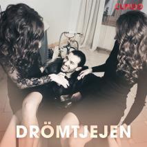 Cover for Drömtjejen - erotiska noveller