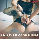 Cover for En överraskning - erotiska noveller