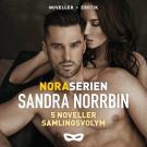 Cover for Noraserien 5 noveller samlingsvolym
